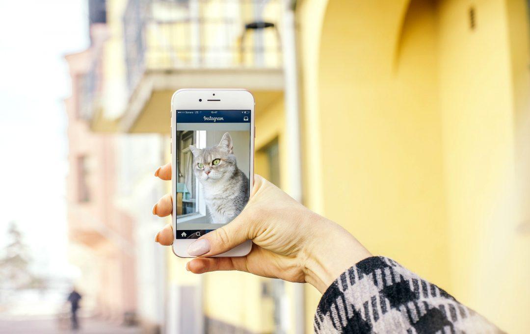 Populair worden op Instagram